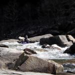 2009-03-08 Nolichucky-March 7&8 010