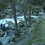 Easter in Smokies Little River Elbow